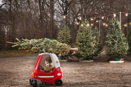 little-boy-with-christmas-tree-on-top-of-toy-car